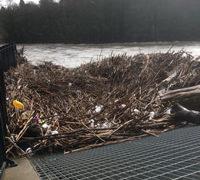 Sticks on the weir as the Taff Floods